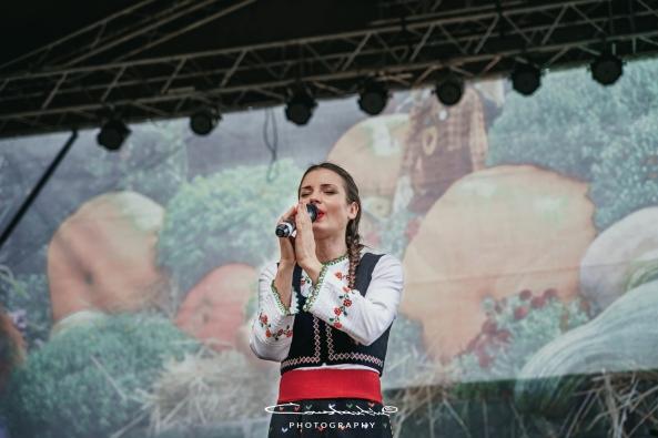 Bostaniada 2017-17