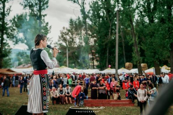 Bostaniada 2017-29